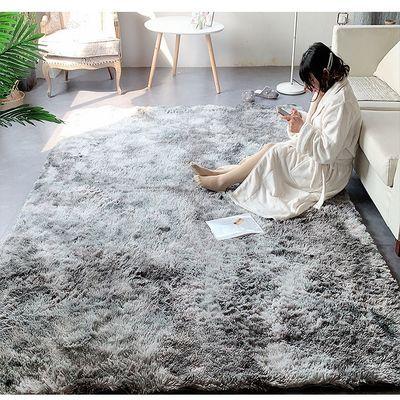 北欧地毯卧室ins网红同款地垫长毛绒房间床边毯地毯客厅满铺可爱