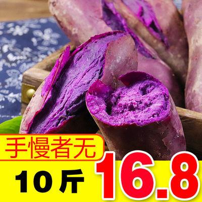 紫薯新鲜中果大果优质健康红薯农家地瓜现挖10斤番薯自种