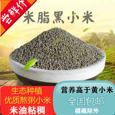 新黑小米2斤/5斤山西特产黑小米粗粮杂粮黑色小米栗米小黑米包邮
