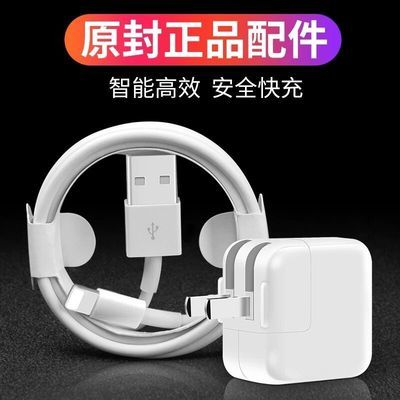 苹果ipad充电器mini4快充iphone数据线5se/6/78plus/Xr闪充充电头