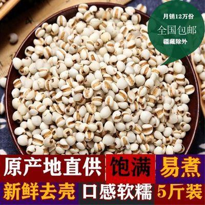 2斤/5斤装包邮新货小薏米新鲜小薏米 薏米仁薏仁米苡仁五谷杂粮粗