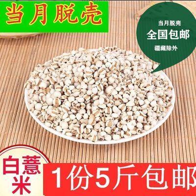 2-5斤贵州薏仁米薏米大薏仁米小薏米赤小豆红豆粥组合原料