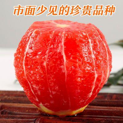 【橙中贵族】秭归血橙10斤中华红橙子5/3斤脐橙新鲜水果酸甜可口