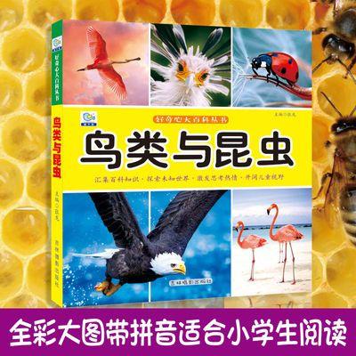 鸟类与昆虫大百科绘本十万个为什么注音科普小百科读物全套科学启