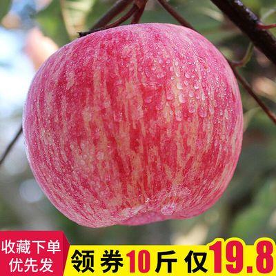 新鲜水果红富士苹果脆苹果丑苹果脆甜5斤10斤装孕妇水果非冰糖心