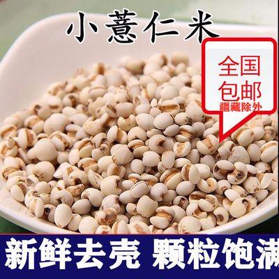 2斤/5斤新鲜小薏米仁薏米贵州祛湿薏仁米小薏米苡米仁粗粮包邮