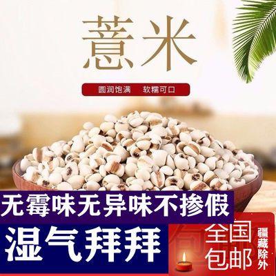 1-5斤装包邮贵州薏仁米薏米大薏仁米非小薏米赤小豆红豆粥原料