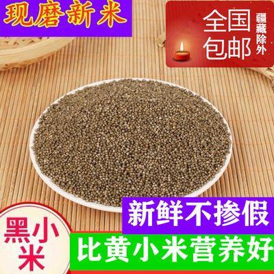 新黑小米1斤/5斤山西特产黑小米粗粮杂粮黑色小米栗米小黑米包邮