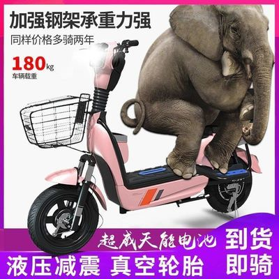 电动车锂电池电瓶车助力车新款男女两轮48V小型自行车代步车