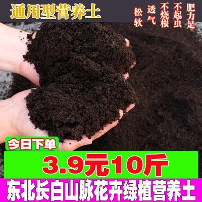 营养土通用种花土壤花卉绿植多肉植物绿萝盆栽种植花泥发财树花土