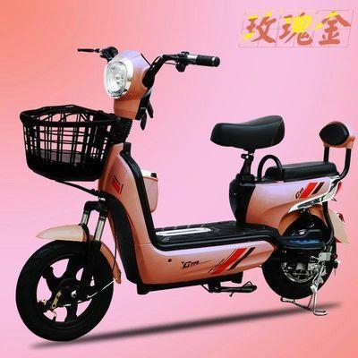 新款电动自行车长跑王48V 男女脚踏助力双人锂电电瓶车代步车