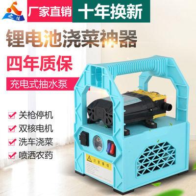 充电式水泵家用电动便携式抽水机小型农用手提喷雾打药泵户外浇菜