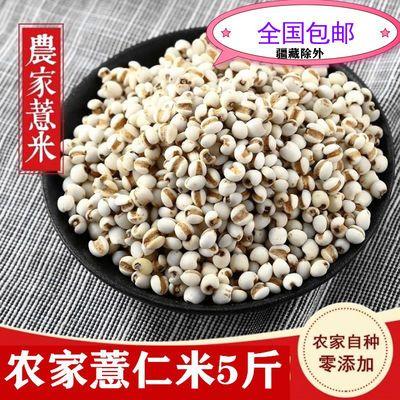 2斤/5斤新货薏米小薏米农家自种薏苡仁米五谷杂粮薏仁米红豆包邮
