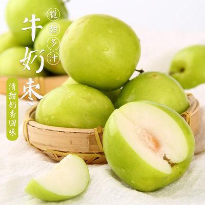 福建牛奶枣贵妃枣脆甜大青枣蜜枣台湾牛奶枣脆蜜枣新鲜1/ 3/5斤