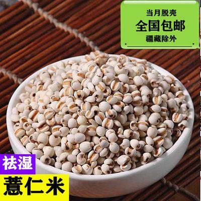 1-5斤装贵州薏仁米薏米大薏仁米小薏米赤小豆红豆粥原料包邮