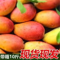 海南中大贵妃芒果水果新鲜当季整箱10斤多规格包邮红金龙树上熟