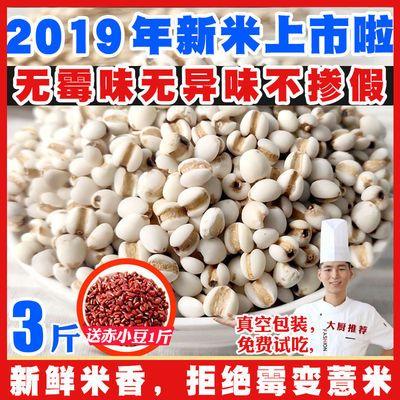 贵州新鲜小薏米薏仁米苡仁米煮粥可配赤小豆芡实五谷杂粮500g包邮【3月10日发完】