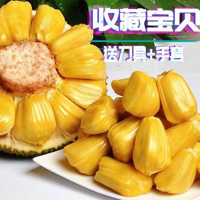海南现摘 新鲜树菠萝蜜1个整装 当季水果 果肉饱满 热带水果 香甜
