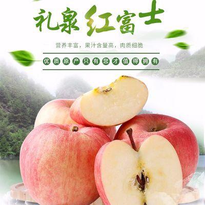 陕西现摘生鲜红富士应季秋季特价午后脆甜水果脆新鲜当季丑苹果