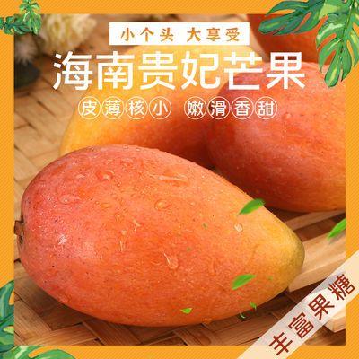 海南贵妃芒果水果现摘红贵妃当季新鲜水果小红金龙大果3/5/9斤