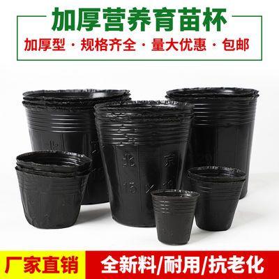 营养钵耐用园艺花卉种子扦插一次性加厚双色塑料育苗袋杯盆盒苗木