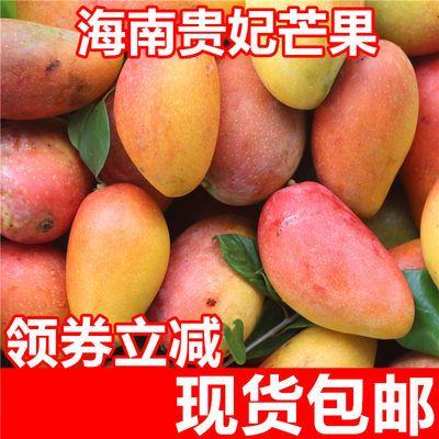 贵妃芒果海南三亚热带水果新鲜水果芒果树上熟红金龙芒果3\5\9\斤