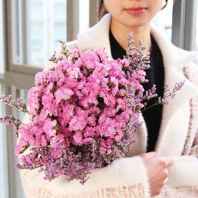 花卉满天星干花花束真花鲜花批发客厅大束永生花摆件房间装饰ins