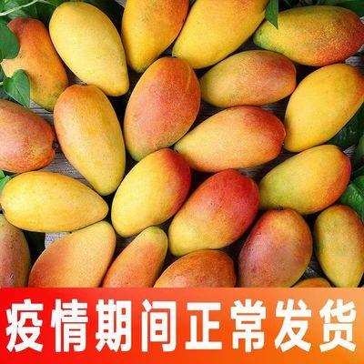 海南贵妃芒应季新鲜红金龙芒果热带水果3/5/10斤整箱批发包邮