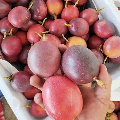 【百香果】10斤5斤大果西番莲汁 百香果汁新鲜白香果酱奶茶店优选
