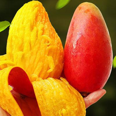 贵妃芒果水果新鲜芒果10斤装芒果批发芒果应季新鲜水果整箱海南
