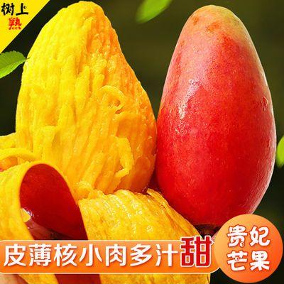 贵妃芒果水果新鲜芒果10斤装芒果批发芒果应季水果整箱海南1斤5斤