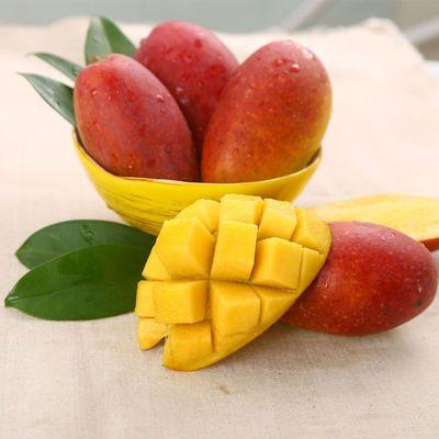 海南树上熟贵妃芒果三亚热带新鲜水果应季水果红金龙芒果非台农