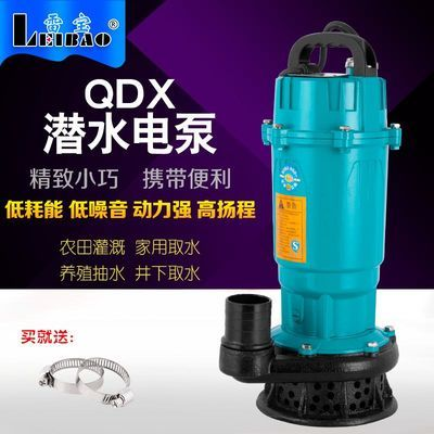雷宝220V家用潜水泵农用灌溉水泵高扬程大流量抽水机1寸2寸3寸4寸