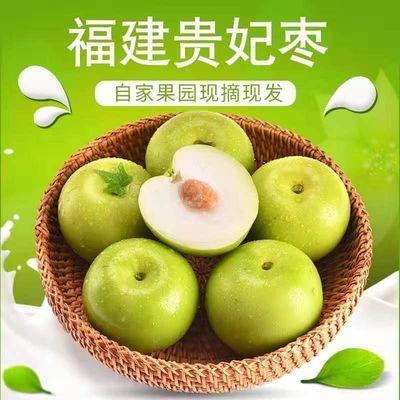 现摘台湾牛奶大青枣冬枣脆甜孕妇水果新鲜应季水果贵妃枣子35斤