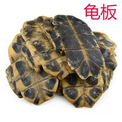 龟板精选野生中药材龟甲龟壳鳖甲老干货100g500g多种规格可选包邮