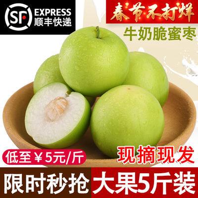 【多多精品】台湾牛奶枣 新鲜现摘现发大青枣贵妃枣蜜枣1/3/5斤