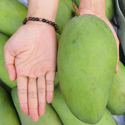 越南香玉芒果大青芒新鲜水果非金煌贵妃(单果200-600g)3/5/10斤