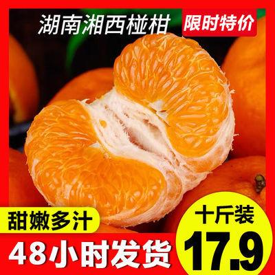 【正常发货】湘西�崭绦孪式圩勇�柑橘应季水果碰柑丑桔好吃不上火