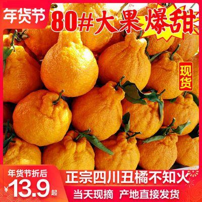 四川不知火丑橘丑桔子丑八怪当季新鲜孕妇水果包邮5斤/10斤耙耙柑