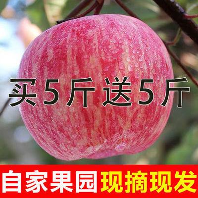 【高山冰糖心】10斤陕西红富士苹果果径75以上精品大果不打蜡脆甜