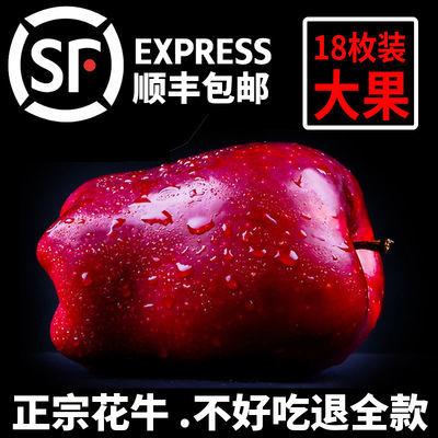 精品甘肃天水花牛苹果水果新鲜应季水果粉面苹果蛇果刮泥老人10斤