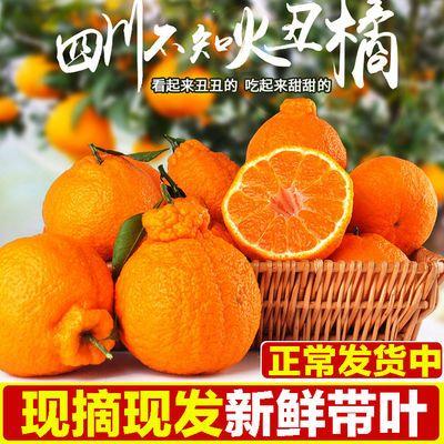 【正常发货】四川丑橘不知火丑八怪橘子新鲜水果丑桔子丑柑橘多选
