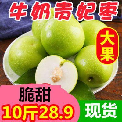 【正常发货】新鲜牛奶枣贵妃枣甜包邮广西大青枣水果3/5斤/10斤装