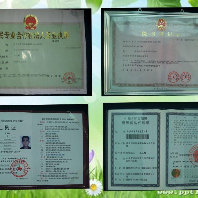 88356-山东正宗章丘鲍芹农家自产2/3/4斤精芹新鲜蔬菜水果产地直销包邮-详情图