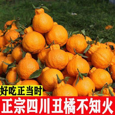 四川丑橘不知火新鲜应季现摘丑八怪柑桔子水果2/5/10斤一整箱批发
