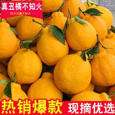 四川丑橘不知火丑八怪橘子新鲜水果孕妇水果当季桔子丑柑柑橘丑桔