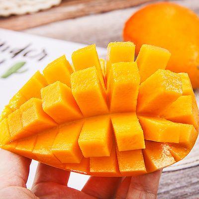 海南贵妃果树上熟七彩芒果10斤/5斤新鲜水果应季中大果带箱特价