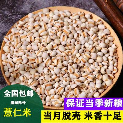 19年新货贵州薏仁米小薏仁米可配红小豆赤小豆粮油抖音�湿包邮