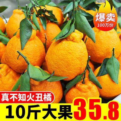 四川丑橘不知火丑柑丑八怪橘子新鲜水果批发新鲜桔子柑橘多规格