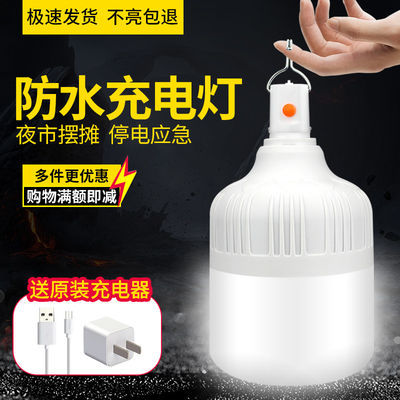 DL停电应急灯家用移动照明节能LED夜市摆地摊灯露营帐篷充电灯泡